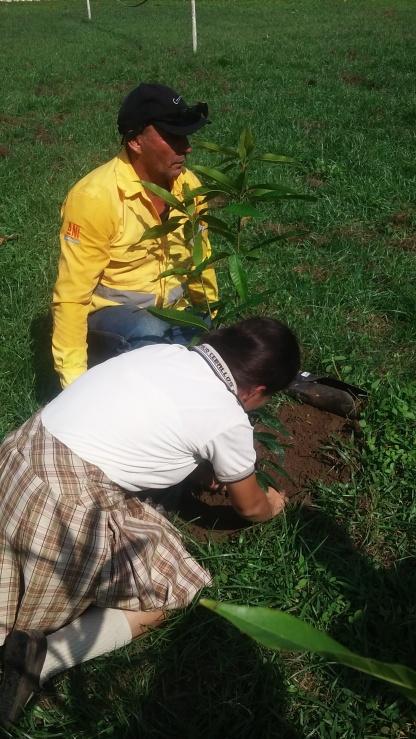 My student planting a mango tree!