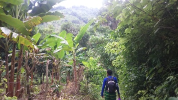 Hiking to the Olla.